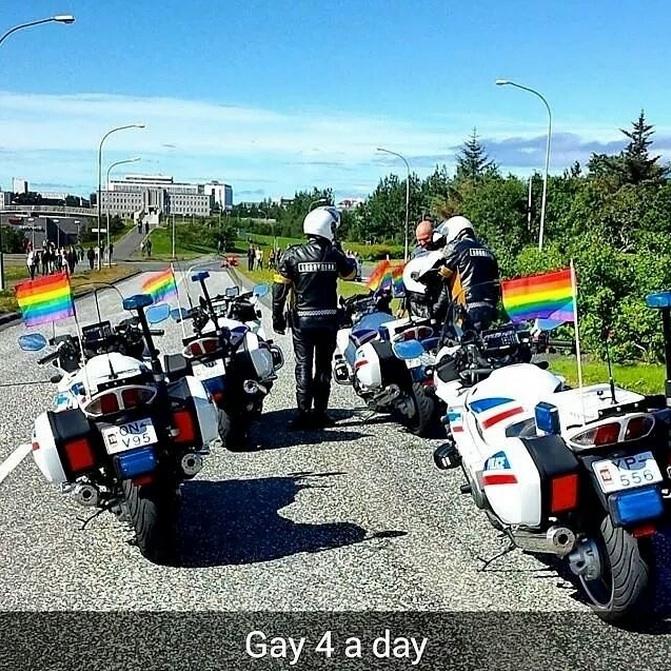 Icelandic Police