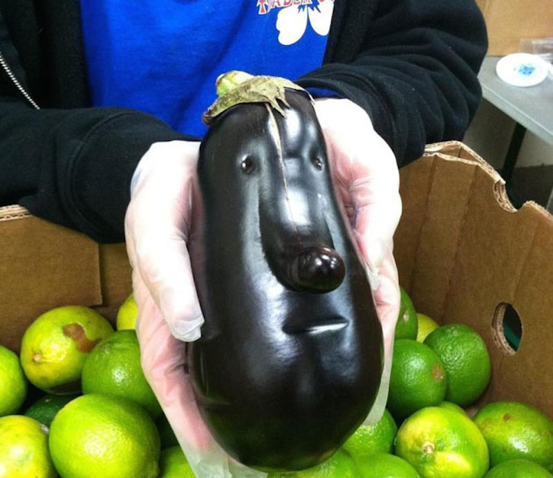 Eggplant that looks like a face.