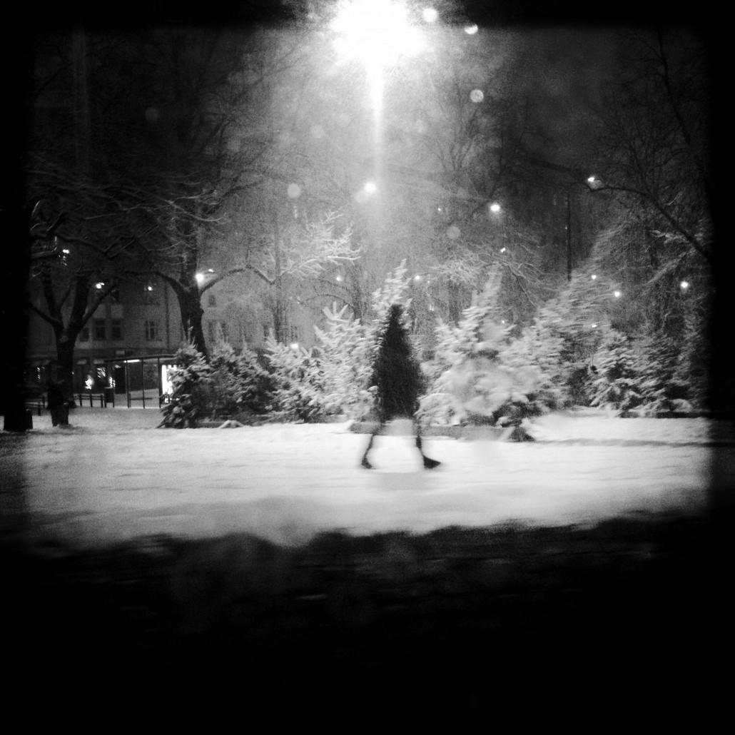 Christmas in Karhupuisto park (Kallio, Helsinki). Photo by Taru Latva-Pukkila.