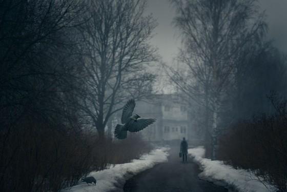 mikko-lagerstedt-darktimes