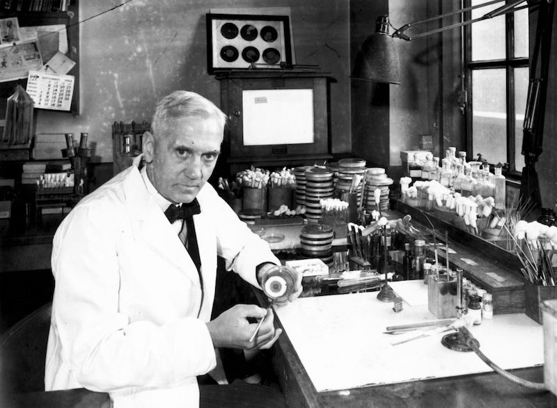 Antibiotics, Alexander Fleming