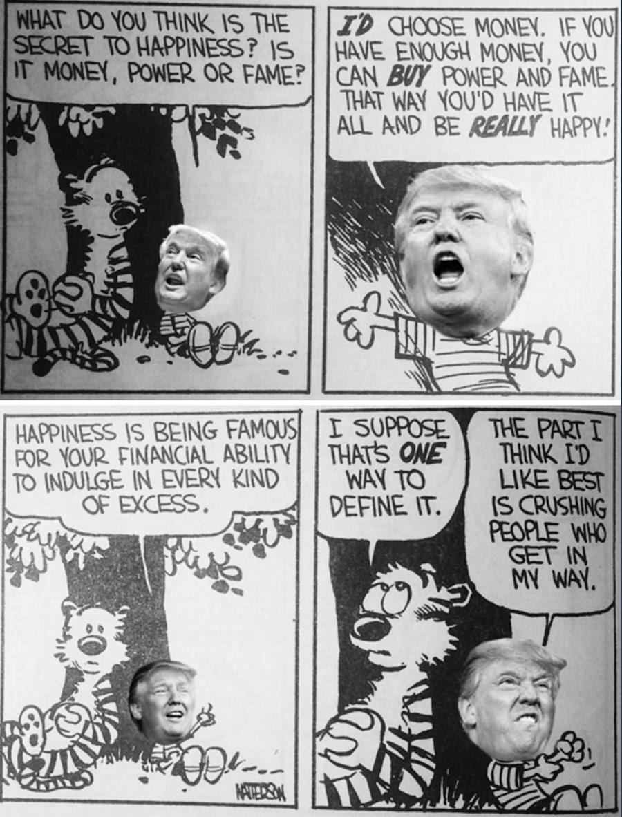 Donald and Hobbes original