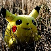 A wild Pikachu appears. Photo by Sadie Hernandez.