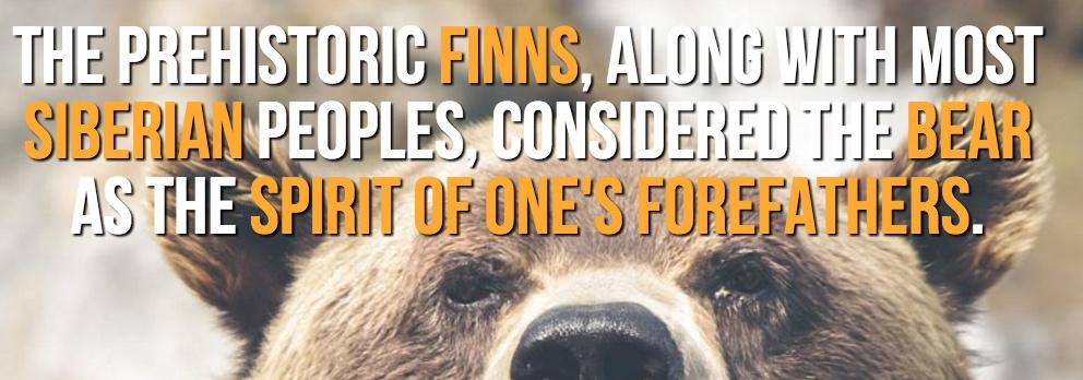 finnishfacts17