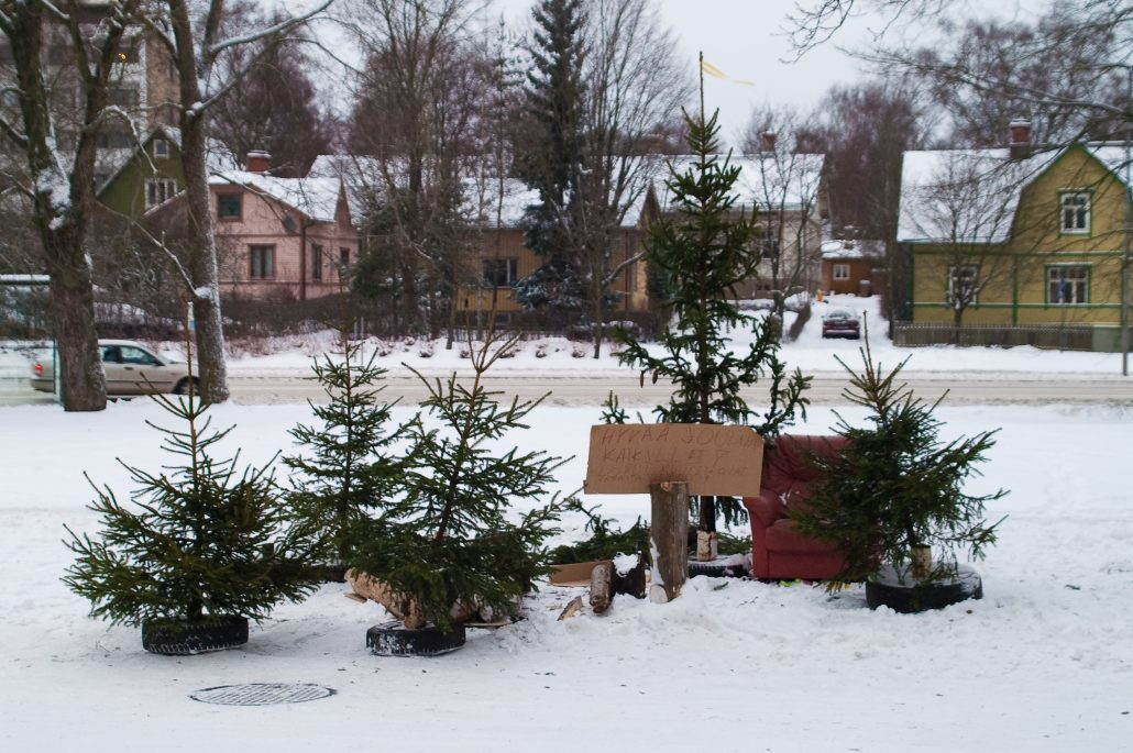 Scrapped, free to take Christmas trees somewhere in Finland.