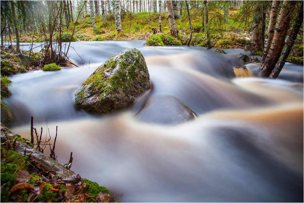A photo of a stream in a forest by Finnish photographer Valtteri Mulkahainen