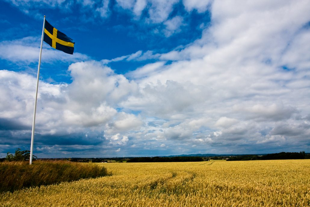 Swedish flag in the countryside