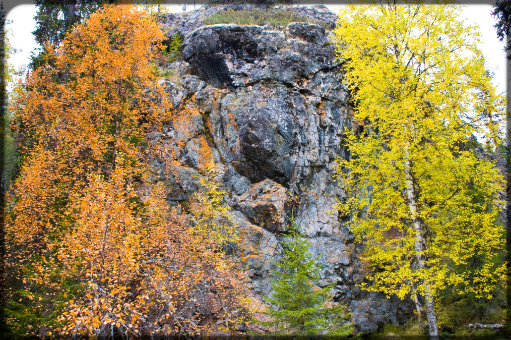 Finnish glacial erratic big rock in autumnal nature