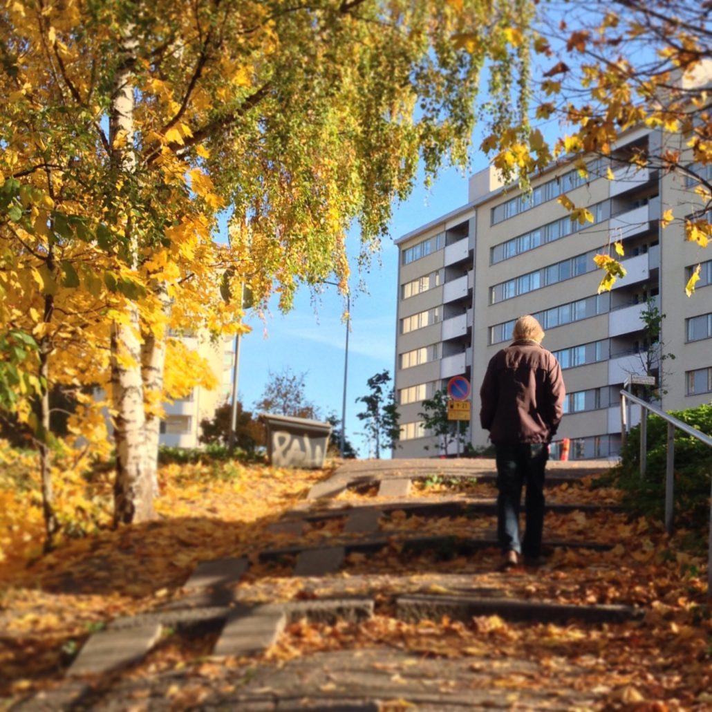 October ruska, autumnal trees in Vallilanlaakso, Helsinki