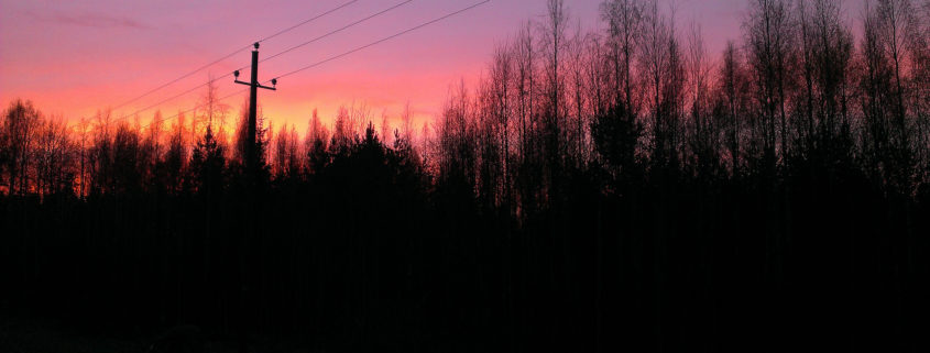 Photograph showing treelines in sunset. By Vesa Linja-aho.