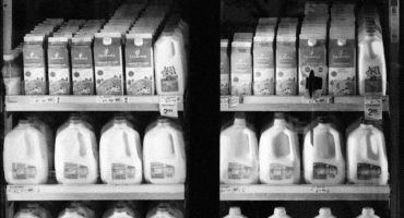 milk photographed in dairy aisle in supermarket