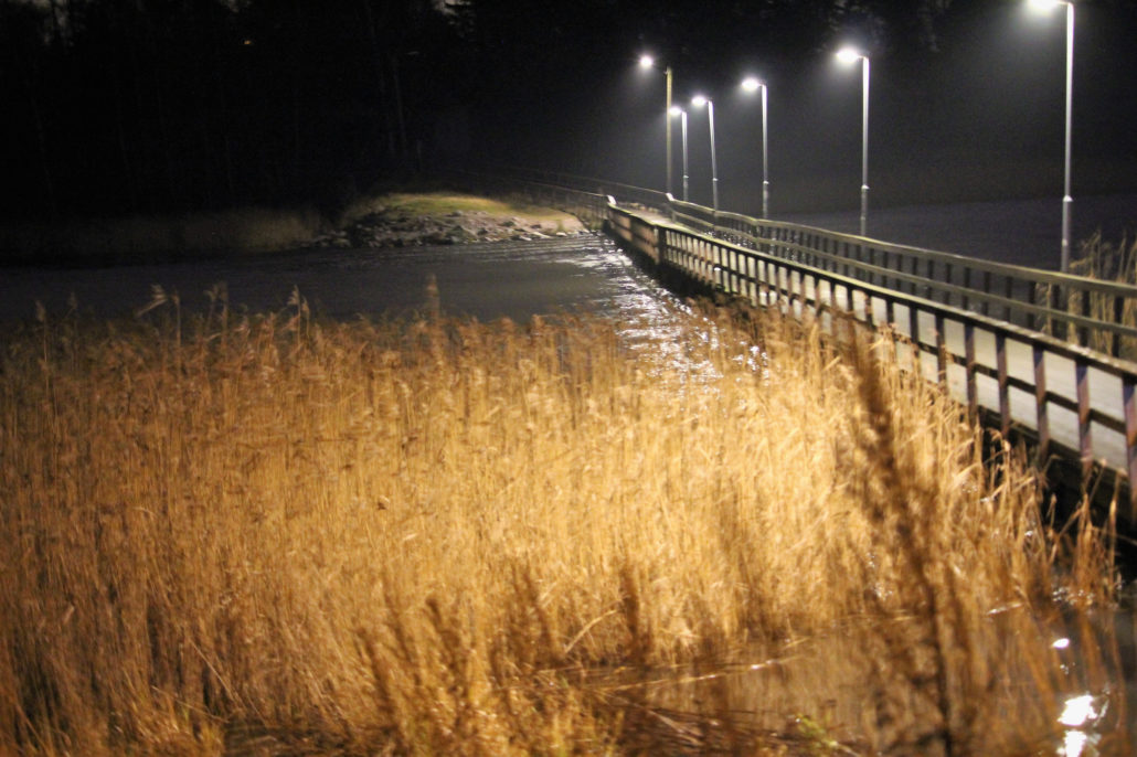 Finnish evening landscape in November, with a pedestrian bridge and reeds